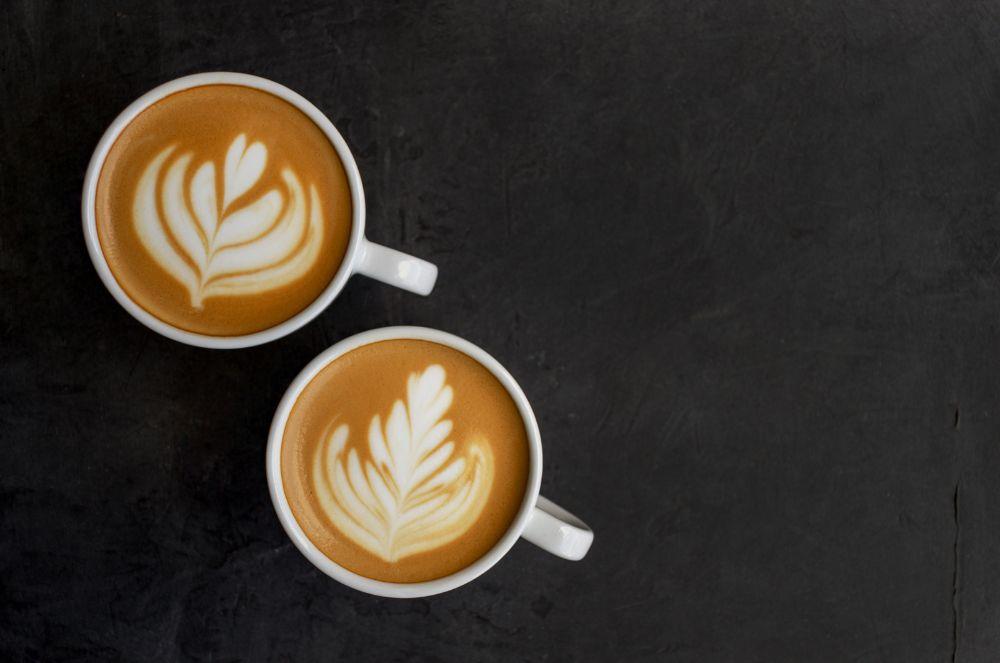 Best Fair Trade Coffees