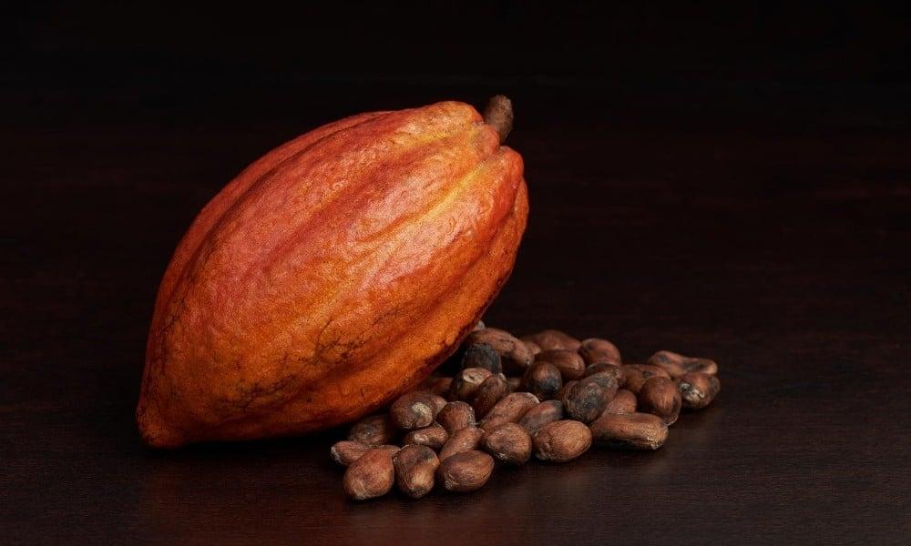 Cacao vs. Cocoa: The Bean Pod