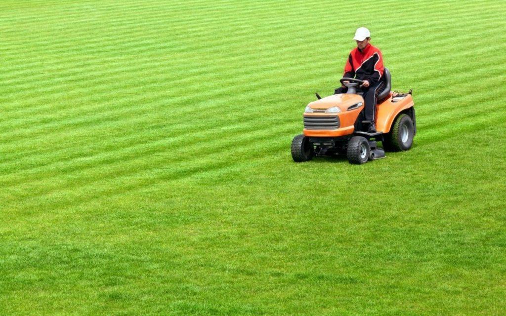 Lawn Tractor vs Garden Tractor on Field