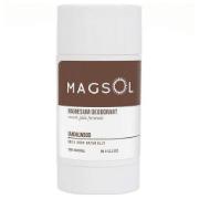 MAGSOL Deodorant The best eco-friendly natural deodorant for men