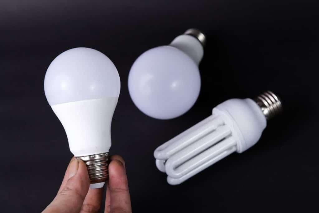 Holding one of the Best Smart Light Bulbs