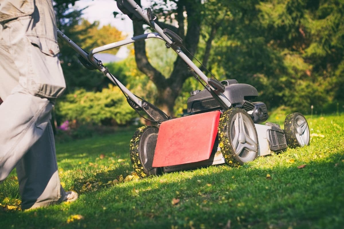 Best Lawn Mowers for Hills
