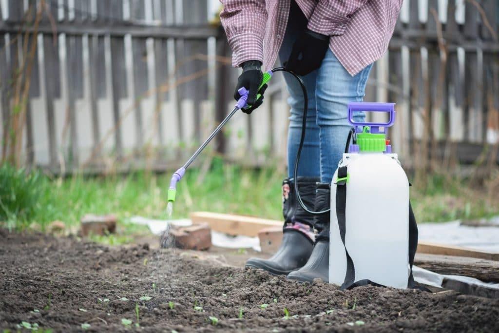 Using Garden Sprayers to water garden