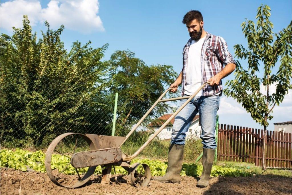 Best Garden Seeders