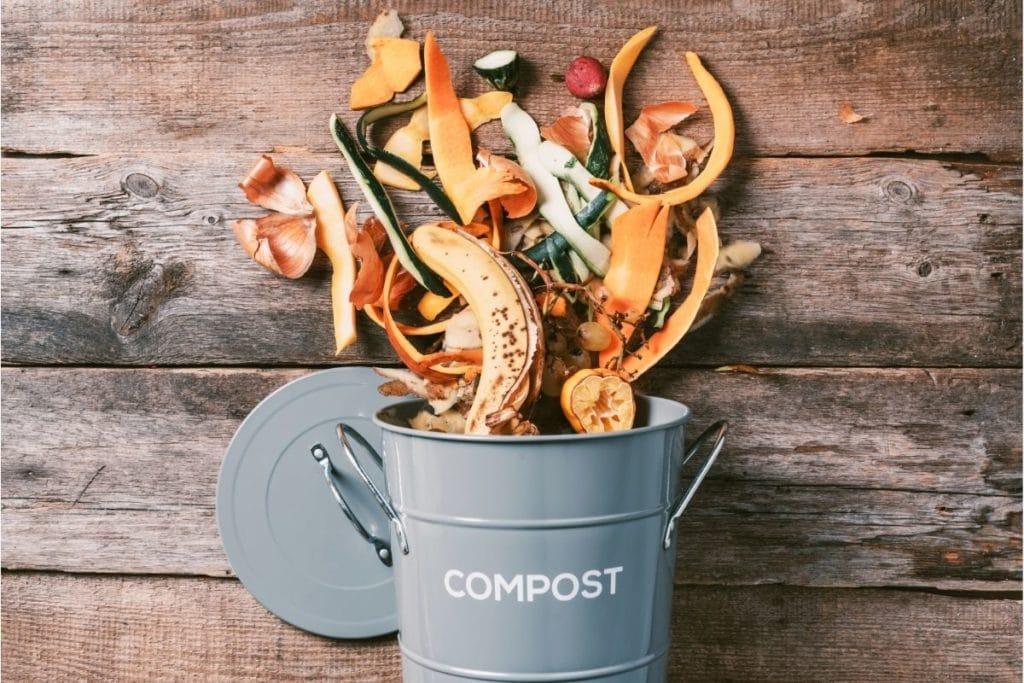 Best Kitchen Compost Bins