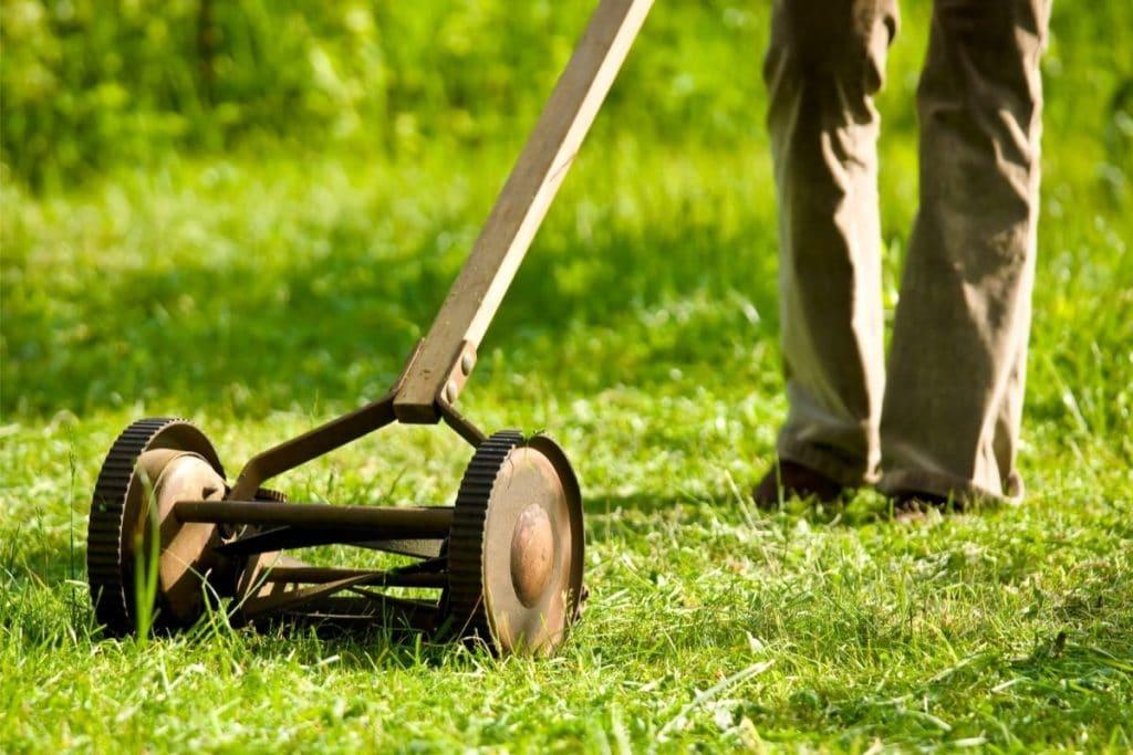 Push Reel Lawn Mower cutting tall grass