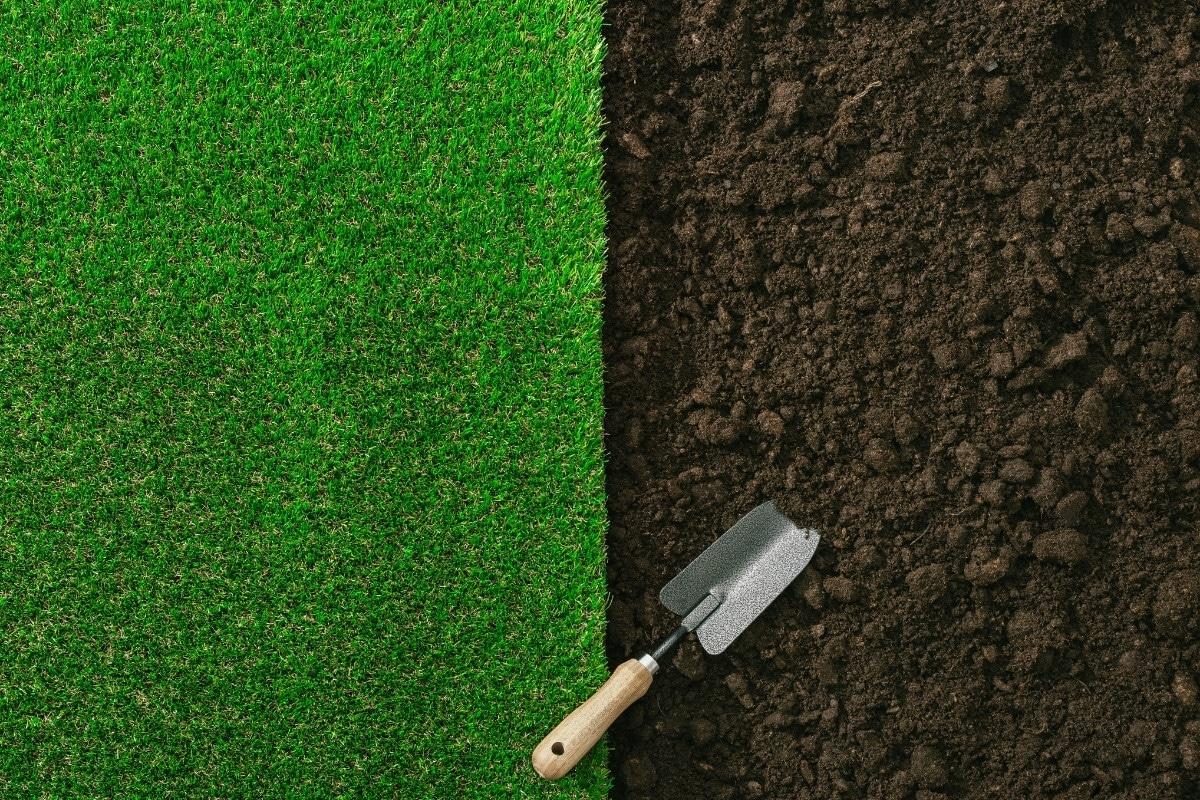 best organic lawn fertilizers