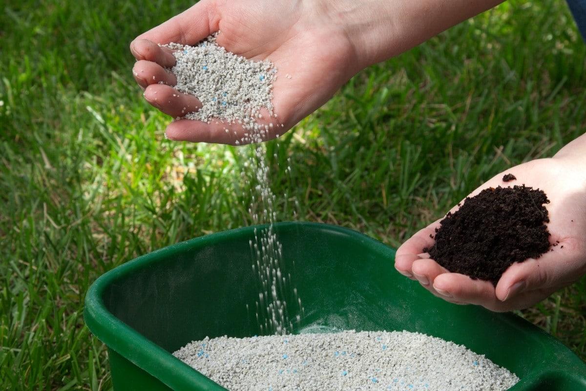 Compost vs. Fertilizer